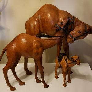 Leather camels